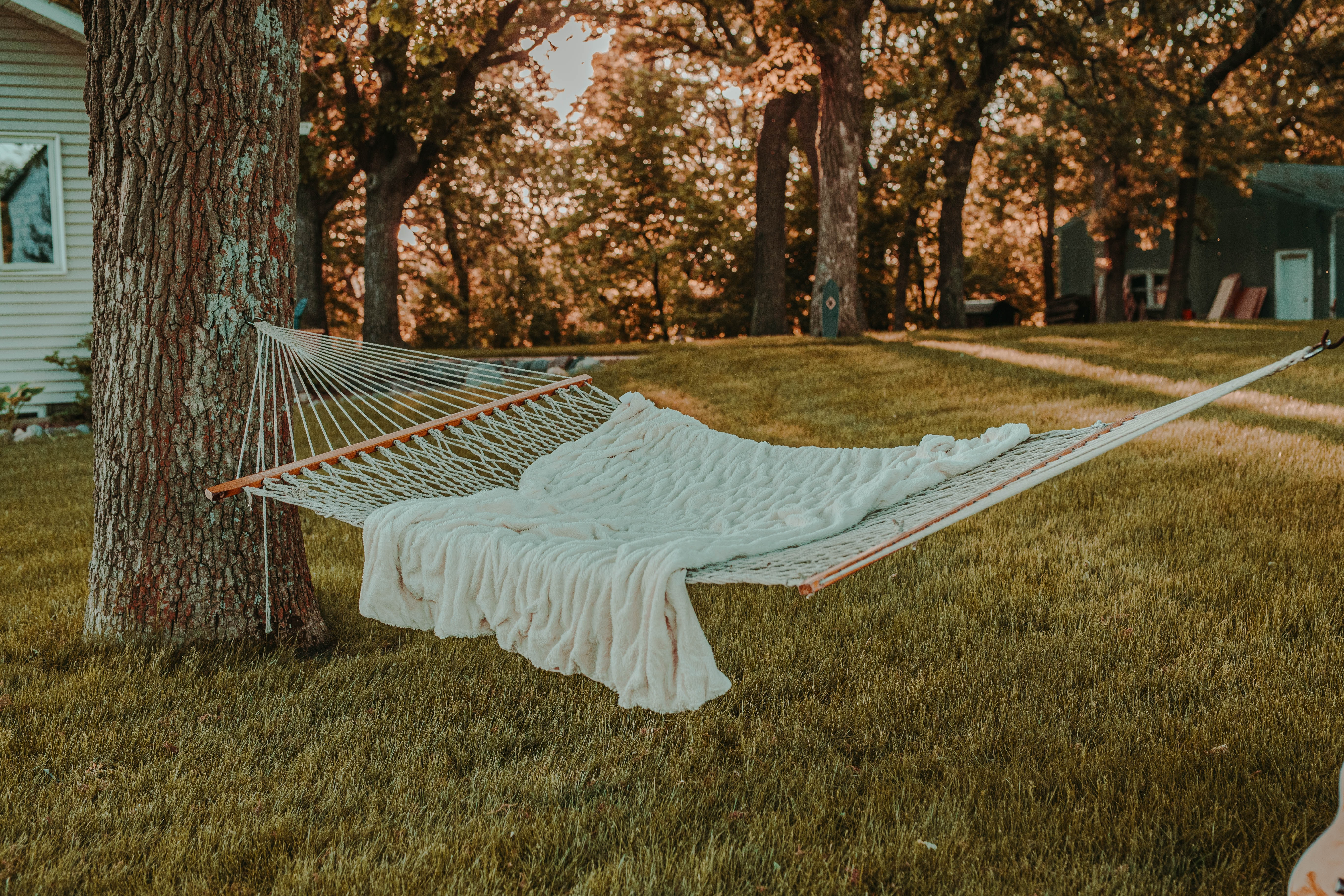 A hammock covered with a white blanket hangs between two trees in a backyard.